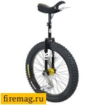 Unicycle QX-series Muni 24""